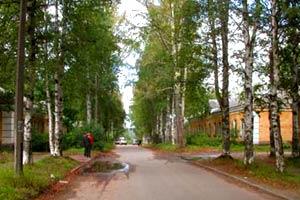 Картинка: ул.Школьная - самая старая улица поселка Кузьмолово. ispolin.su